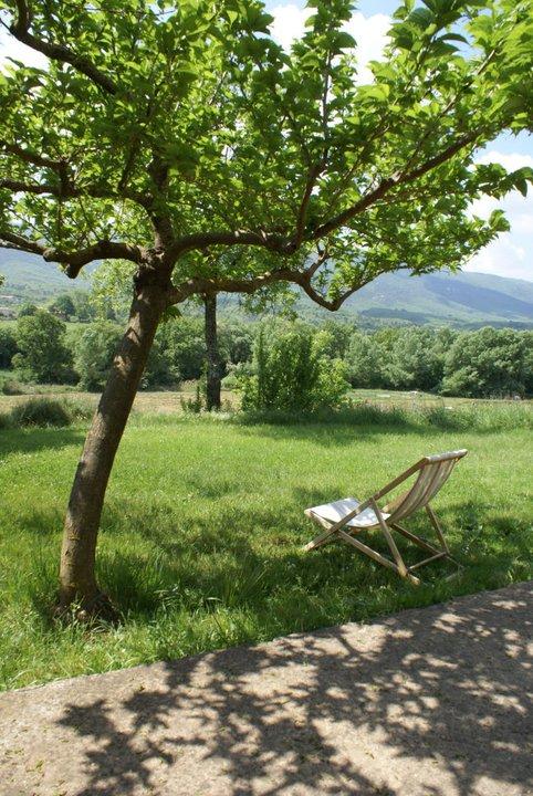 jardin face au Luberon